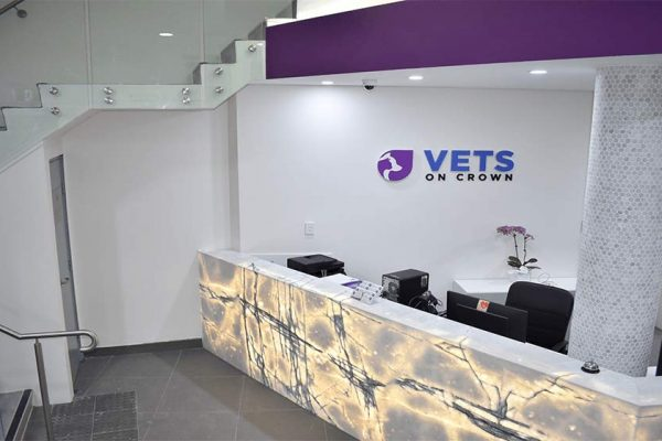 VOC-Fit-Out-Reception-1R